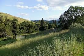 file santa teresa county park san jose california usa