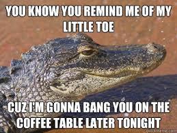 Alligator Memes - sleazy alligator memes quickmeme