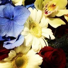 white and blue floral arrangements fireworks of big apple color patriotic white blue flower