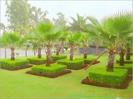 Collection Garden Design In India s Best Image Libraries