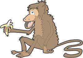 monkey and banana clipart 57