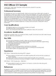 Janitorial Resume Examples Mother Tongue Amy Tan Essay Argumentative Essay On Religion In