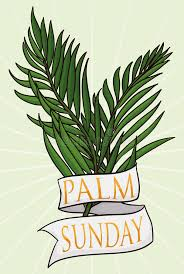 palm for palm sunday of branches with ribbon for palm sunday vector