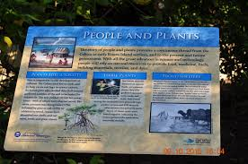 native plants fort myers free bird u0027s adventures history of the mound house in lee county