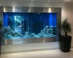 designer aquarium considerations of hygiene and aquarium design society of