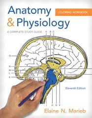 Principles Of Anatomy And Physiology Ebook Anatomy U0026 Physiology Coloring Workbook A Complete Study Guide 11th