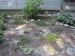 august 2014 the pickle patch