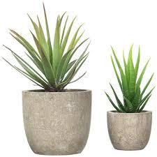 mini plants amazon com velener mini home decoration artificial plants aloe with