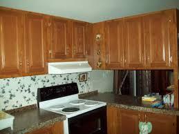 single wide mobile home kitchen remodel ideas mobile home kitchen remodeling ideas ellajanegoeppinger com