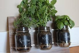 Mason Jar Wall Planter by 6 Creative Hanging Gardens That You Can Make Yourself Inhabitat