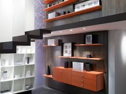 Home Storage Solutions Sloped Ceiling Furniture Placement Schmidt