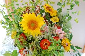 100 all flowers 18 best gulo gulo images on pinterest