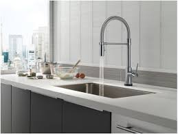 Pre Rinse Kitchen Faucets by Faucet Com 9659t Ar Dst In Arctic Stainless By Delta