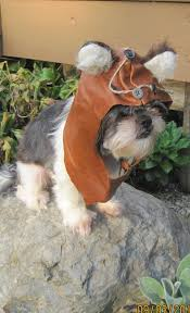 star wars dog costumes korrectkritterscom