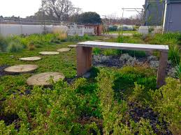 green roof in the city sustainable house day name photo by marco