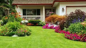 how to prepare your garden for winter remove dead plants