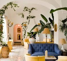 indoor vine plant 5 favorites vines as indoor decor gardenista