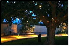 Landscape Low Voltage Lighting Lv Landscape Lighting Landscape Lighting Low Voltage Landscape