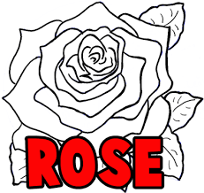 Vase Of Flowers Drawing Coloring Page Engaging How You Draw A Rose Flower Thumb Coloring
