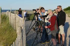 Delaware wildlife tours images Youth birding the aba rockjumper at camp avocet rockjumper jpg