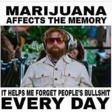 Funny Pot Memes - marijuana memory helps forget bs funny weed memes
