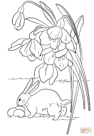 easter bunny found some eggs coloring page free printable