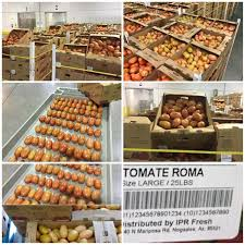 cuisine az noel noel siler domestic international sales executive sun