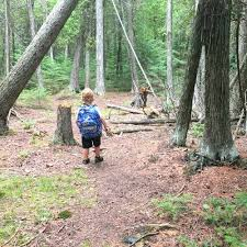 Michigan nature activities images 101 free things to do with kids in michigan jpg