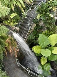 Okc Botanical Gardens by Inside The Crystal Bridge Picture Of Myriad Botanical Gardens
