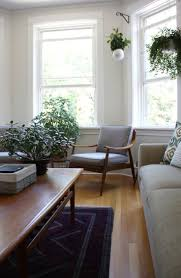 hanging indoor plants best images on pinterest home and adefdcffee