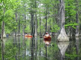 6 great paddling trips in state parks this fall canoeing