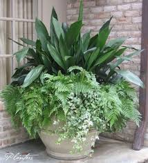 7 container gardening ideas beyond summer flowers container
