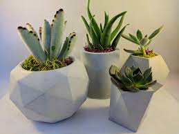 group of 4 geometric concrete planters indoor pots for
