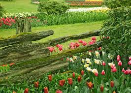beautiful flower gardens home garden ideas flowers house gallery