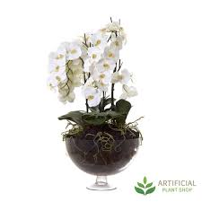Fake Orchids White Orchid In Round Glass Vase 1m
