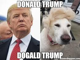 Donald Trump Meme - donald trump dogald trump meme custom 46432 memeshappen