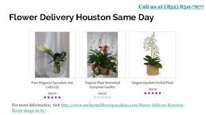 houston flower delivery houston flower delivery