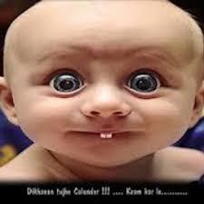 imagenes graciosas videos videos graciosos videograciosohd twitter