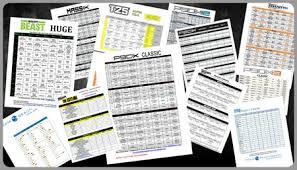 Beast Meal Plan Spreadsheet Beast Workout Sheets Zillafitness