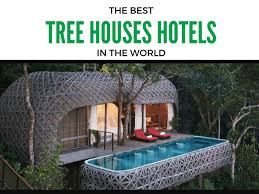 Top 6 Amazing Tree House Hotels That Will Make YouFall From The