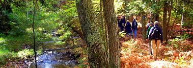 in fall hiking in fall traverse city mi