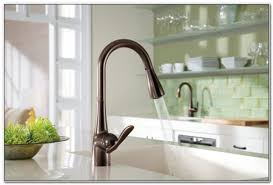 moen waterhill kitchen faucet moen waterhill rubbed bronze kitchen faucet sinks and