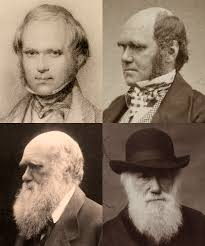 Third Eye Blind Darwin Darwin In Letters 1870 Human Evolution Darwin Correspondence