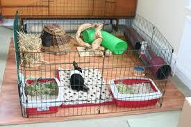 Rabbit Hutch Set Up Rabbits United Forum