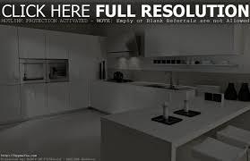 modern kitchen designs 2012 cabinet modern kitchen cabinet ideas best modern kitchen design