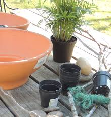 how to make a resurrection garden