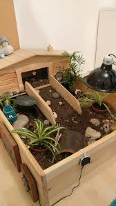 25 best turtle homes ideas on pinterest turtle crafts