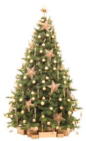 decoration ideas gorgeous branches christmas tree and small lights
