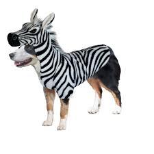 dog halloween costumes zebra u2013 canine styles