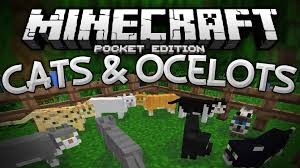 ocelots u0026 cats in mcpe tamable ocelot mod minecraft pe